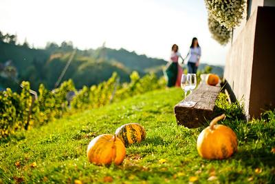 Steiermark Herbst_8482