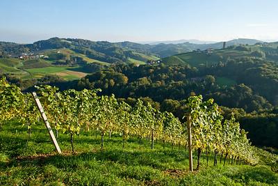 Steiermark Herbst_8350
