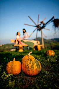 Steiermark Herbst_8612
