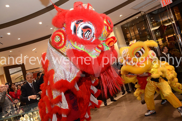 Tourneau Lunar New Year Celebration 2.11.16