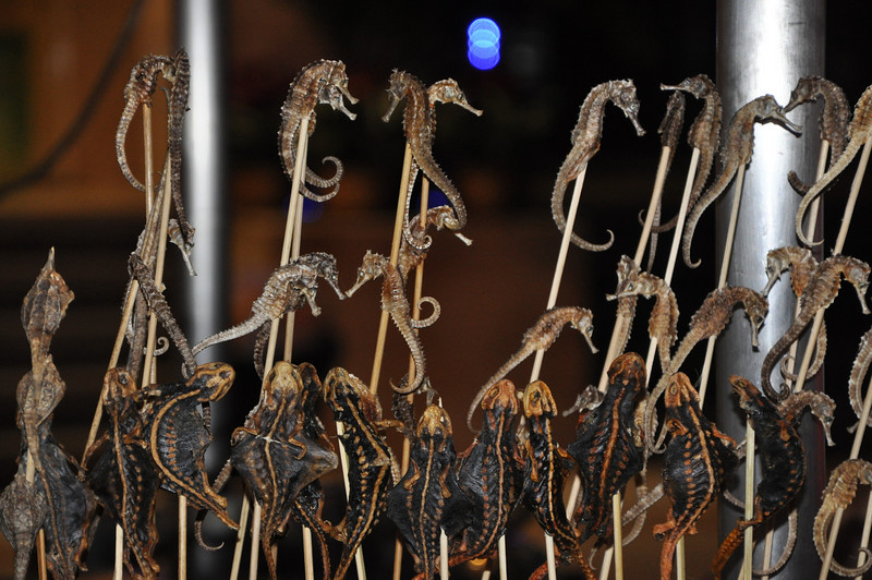 They're actually all dry and crunchy...I suppose they've already been cooked and then dried, or maybe they're just Seahorse Jerky.  They taste like burnt popcorn.  In front of them looks like some kind of Salamander On A Stick.