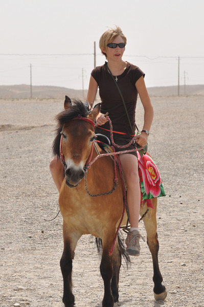 Brenna brings the horse back in...reluctantly.