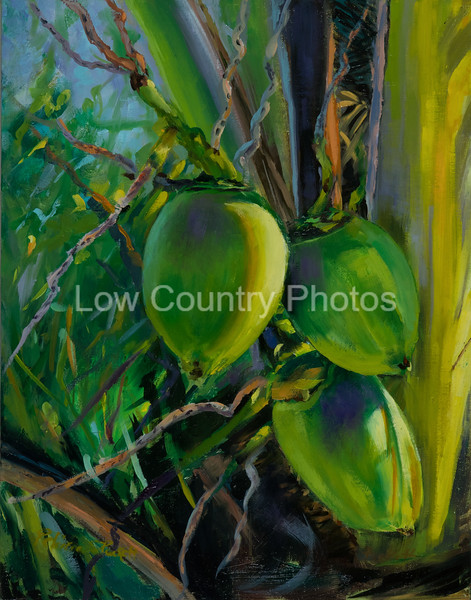 Sunlit Coconuts