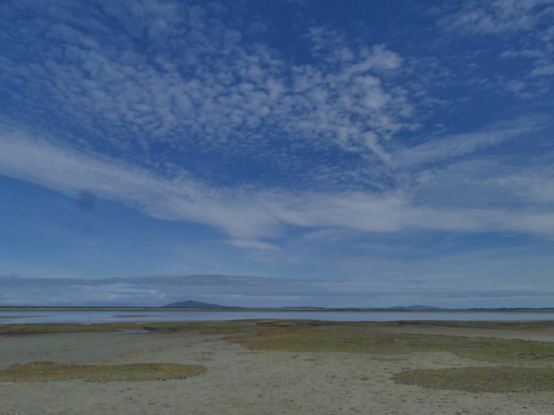 Awarua Bay