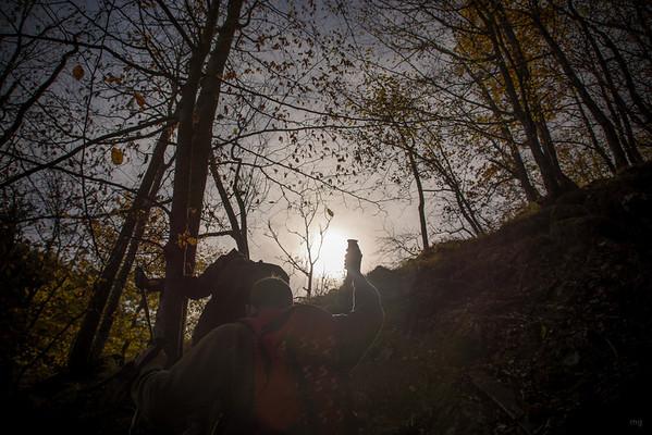 durch Laub und Wald kämpften wir uns höher