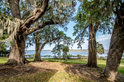 View from the Hobcaw Home in Hobcaw Barony, a 17500-acre wildlife refuge near Georgetown, SC