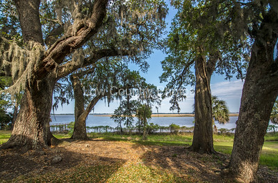 The view from the Hobcaw Home in Hobcaw Barony, a 17500-acre wildlife refuge near Georgetown, SC