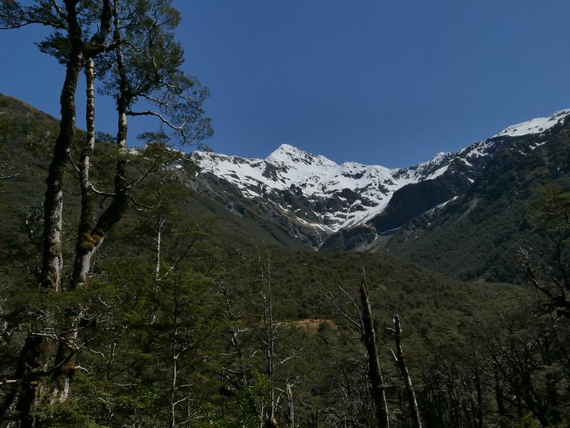 Mt Rolleston