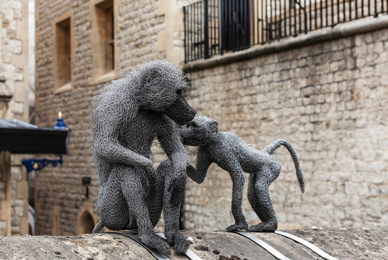 Wire wool sculpures of two monkeys at the Tower of London