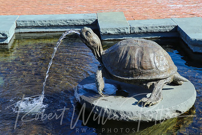 2681-Turtle Fountain