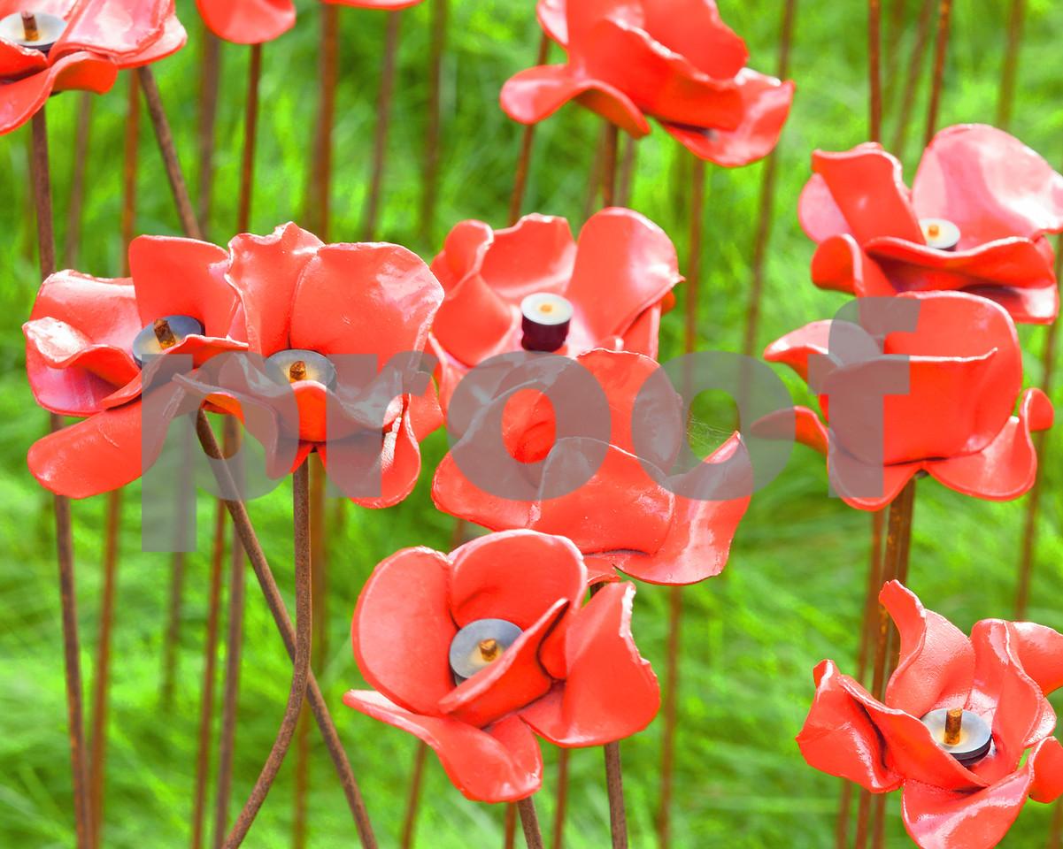Red Ceramic Poppies Close Up