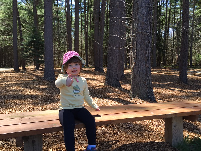 Junior Assistant Forester