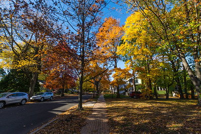 Westmont Ave in Haddonfield,New Jersey