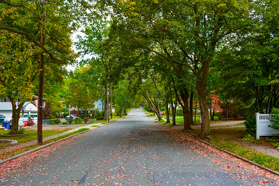 Town Street or Roadscape