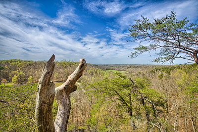 Pine Knob - The View