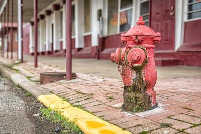 Mossy Hydrant