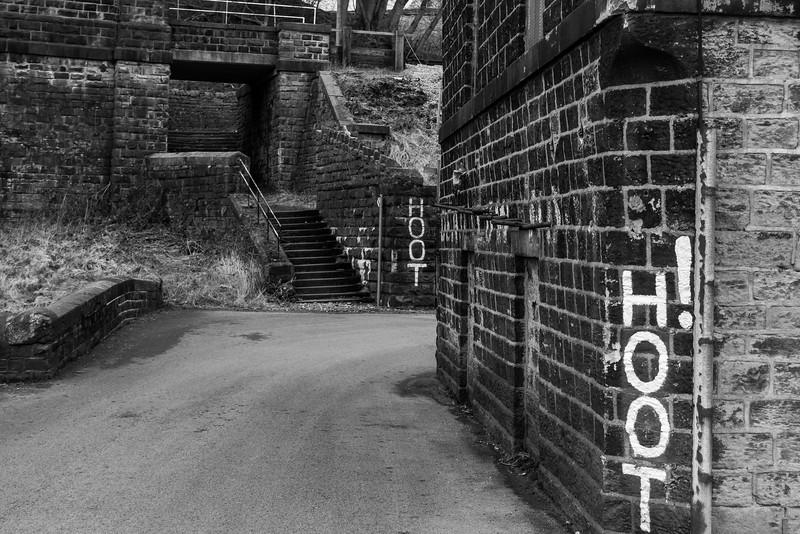 Hoot Corner