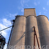 Farmer's grain elevator, Fisher, IL