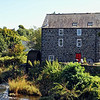 Bonner Mill<br /> Bushmills<br /> County Antrim<br /> 26th August 2014