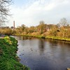 The River Maine <br /> Randalstown<br /> County Antrim<br /> Friday, 10th April 2015