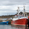 Sea Mourne, Ardglass harbour, County Down. 25/2/2011