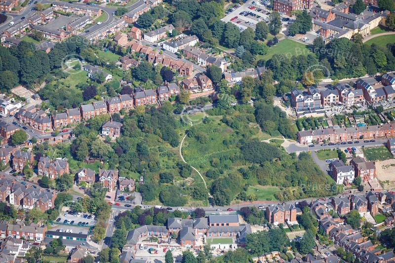 Aerial photo of Millenium Park.