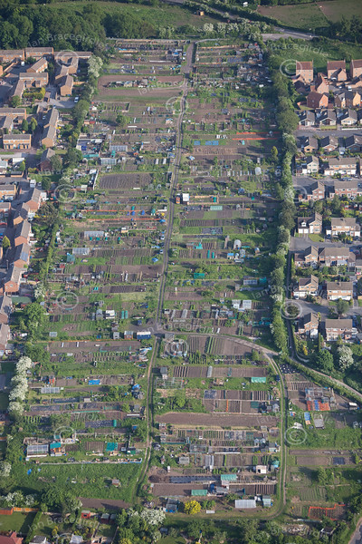 Aerial Photo of allotments.