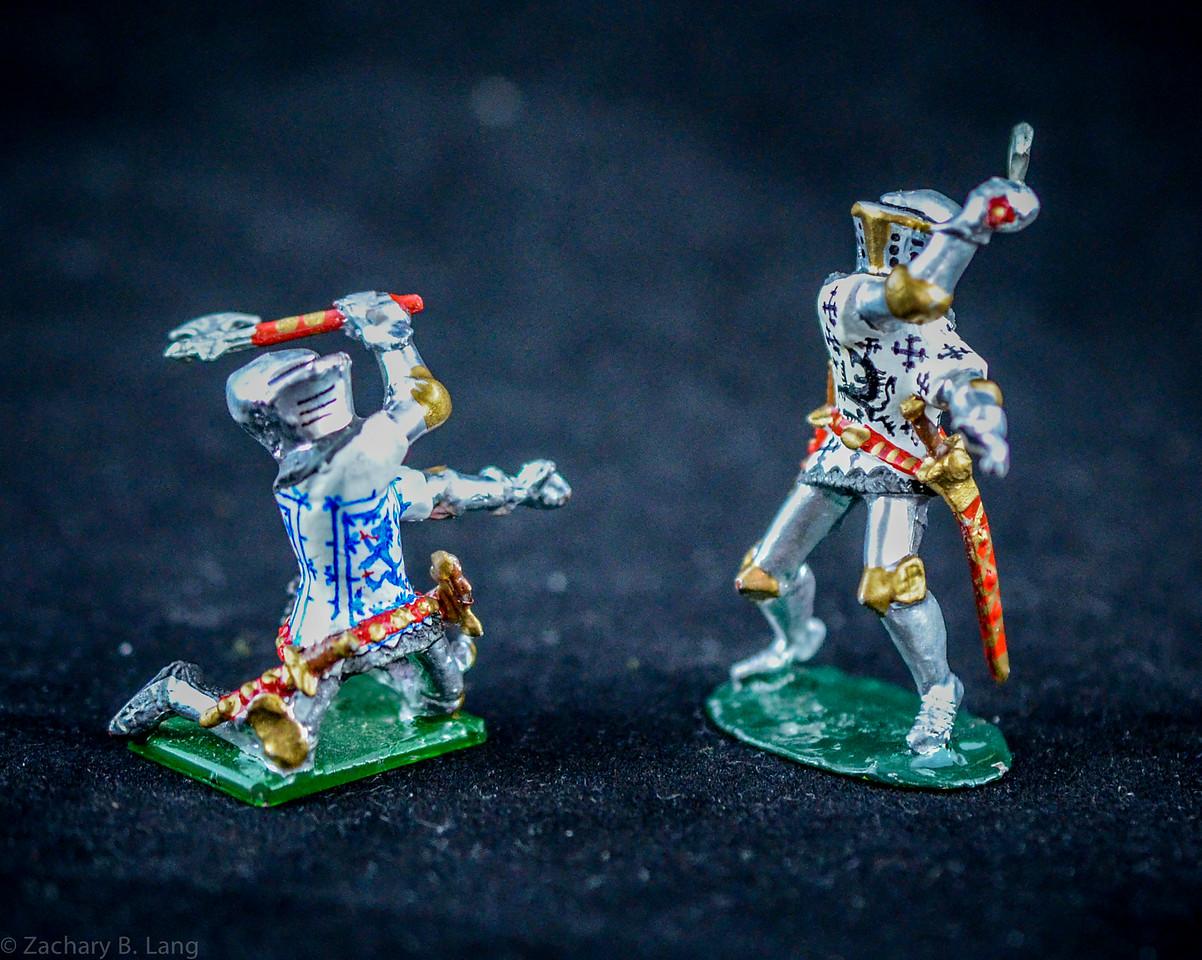 Hornung Heraldic Knights 3