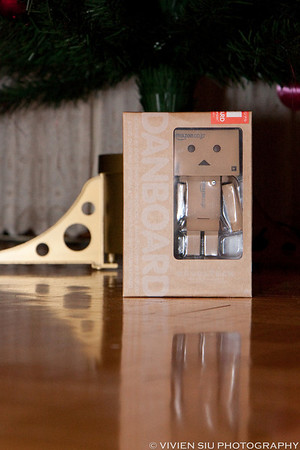 The Birth of Danbo