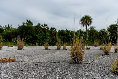 vacant land-9475-2