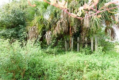 vacant land-9439