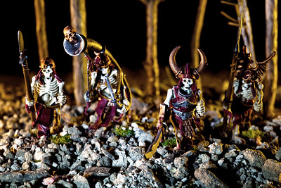 Skeletons Patrolling The Cursed Forest