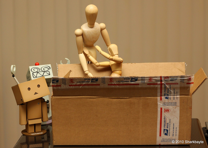 Day-160 Danboard and Suzuki rushed to see what was in the box. #365Project Suzuki seems a bit upset. I'll have to have a chat with him. (2010.06.09) 50.0mm 1/60s f/4.0 ISO: 400 flash@sharkbayte