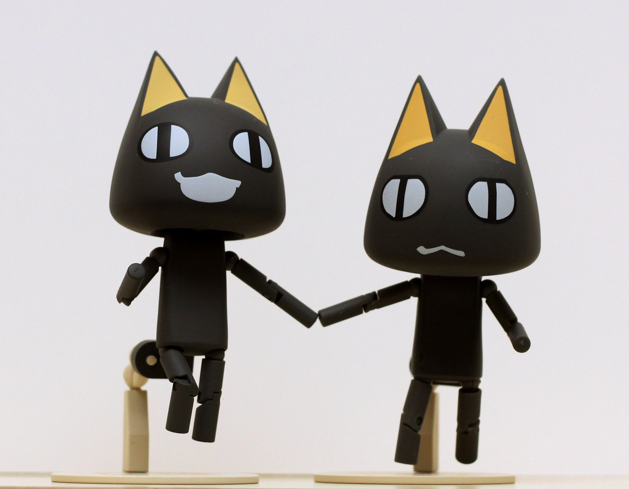 KURO twins arrived today! I'll have to figure out names for them. Still waiting on the last cat to arrive.