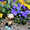 "Pierre is a happy pup!  He says: ""Spring has Sprung!! Happy Spring!""-Sharkbayte"