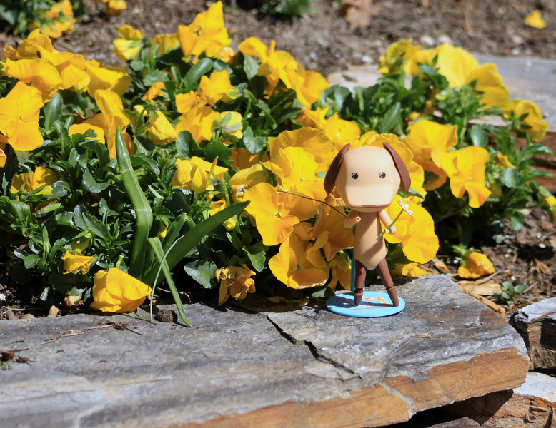 03.20.2010 day 79-Spring has Sprung! Happy Spring from Pierre!