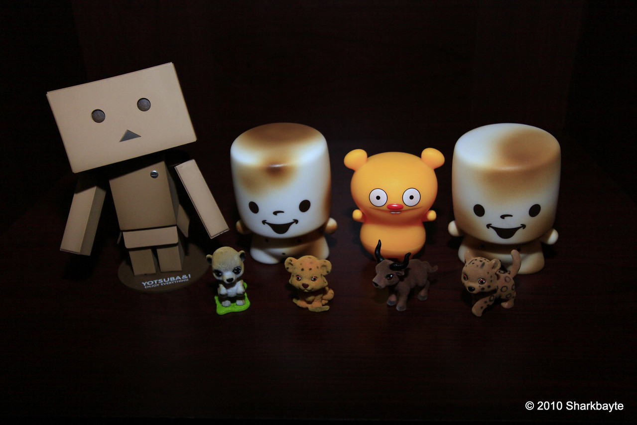 Day 216-Selective hearing. Danboard trying to explain why I should allow them to keep the forest babies as pets. I told him, that we had visited the forest to take in the view, not take home what we viewed.  He said that was not what he had heard. (2010.08.05) #365Project