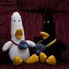Together at last. Long lost brothers, Walter T Duck and his brother Wally T Duck, meet again after many years apart. Both photographers, are seen here catching up after a big meal. I ended up going to bed leaving them to chat. They were quacking me and the gang up with their antics and stories. Day 18:365 (2011.01.18) @sharkbayte