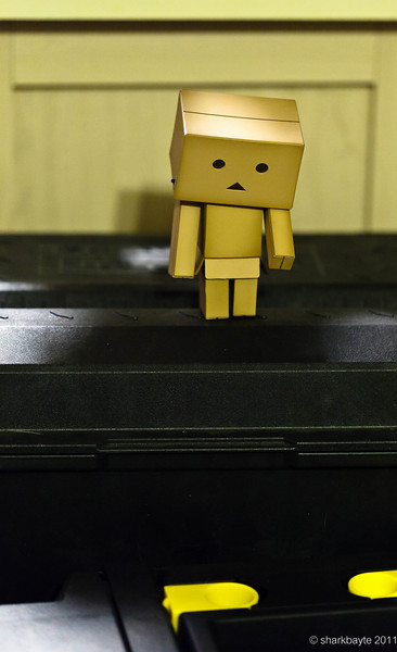 You want me to jump down to there? I am guessing Danboard is scared of heights...Day 11:365 #365Project @sharkbayte