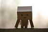 Danbo exercising.