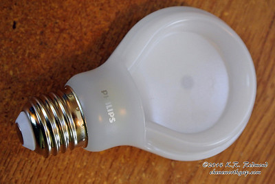 Philips 800 Lumen LED Lamp