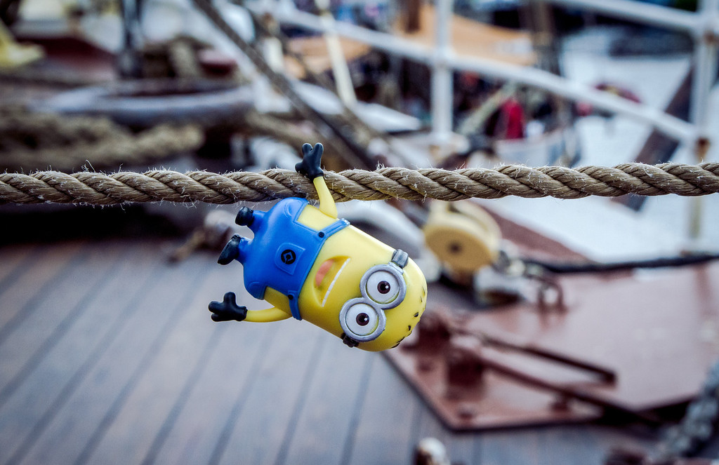 Hang in There Minion