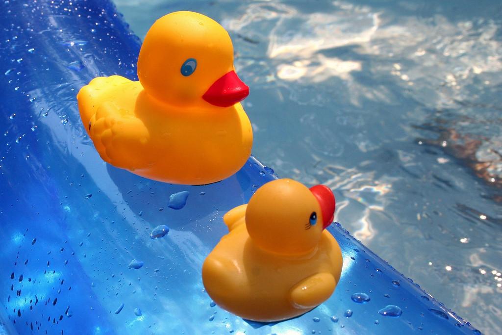 Summer Duckies