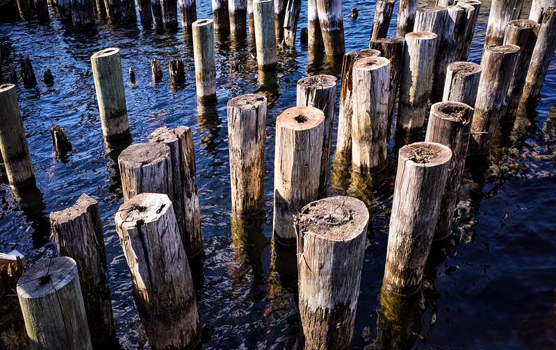 Piles In Lake Näsi II
