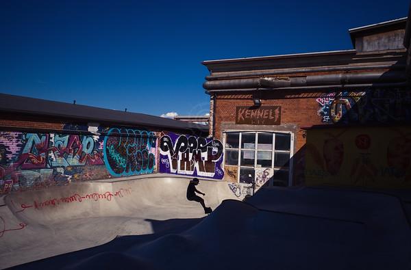 Skate Pool II