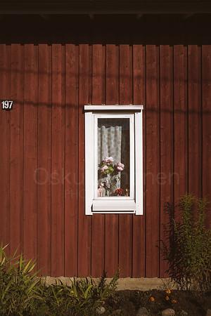 White Framed Window