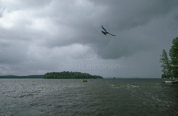 Lake Näsi At Rain V