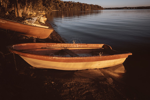 Rowing Boat In The Sunlight III