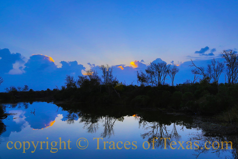 """Title:  Picasso Had His """"Blue Period."""" So does Anahuac<br /> <br /> Comments:<br /> <br /> Location:  Anahuac National Wildlife Refuge"""