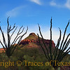 Title:   My Hands on Her Breast <br /> <br /> Comments: Look closely.<br /> <br /> Location: Big Bend National Park